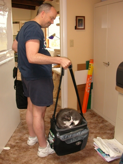 This is not a cat carrier