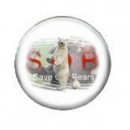Save our Bear badge
