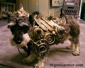 Organic Armor again