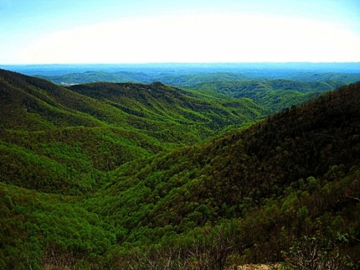 This is Wildcat Rock Overlook in the summer.