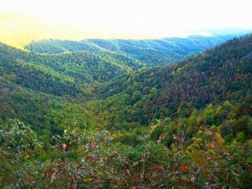 This is Wildcat Rock Overlook in the fall.