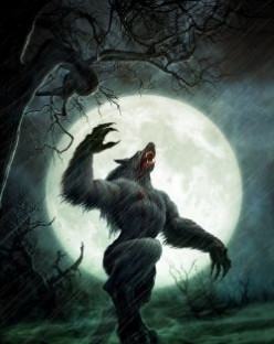 Howls in the night