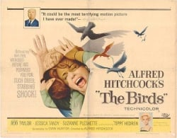 The Birds original movie poster Alfred hitchcock