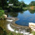 Wellfield Botanic Gardens - Elkhart, Indiana