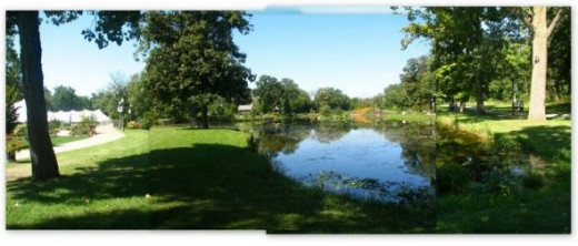 3 photos to show the main pond and landscape