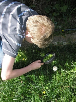 Magnifying Glass Observations Nature Study
