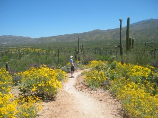 My Favorite Hiking Photo of 2010