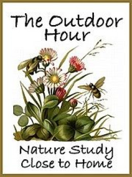 Outdoor Hour Challenge blog button