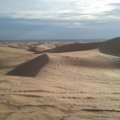 Duning In Glamis California