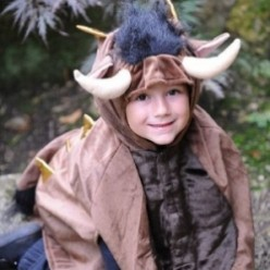 Kids Gruffalo Monster Costumes