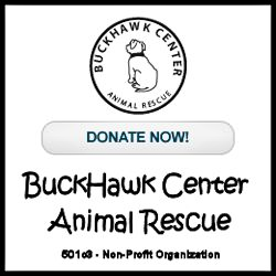 BuckHawk Center Animal Rescue
