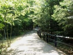Path in the park