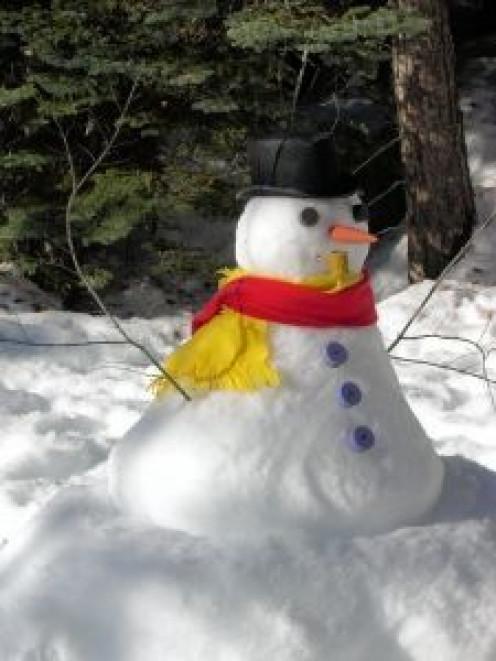 Snowman keeping watch