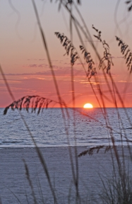 Treasure Island at sunset