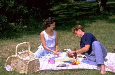 Classic picnic