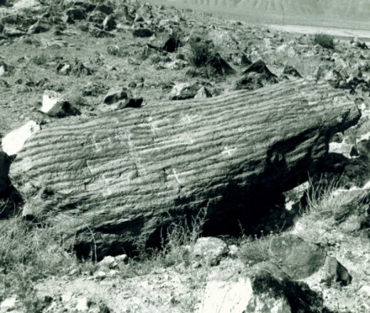 Hollow petrified tree bark, Ron believed it was the covering that Noah threw off at the end of the flood.