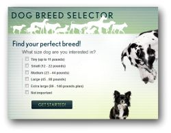 Animal Planet - Dog Breed Selector
