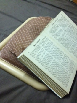 An alternative to a book pillow that serves multiple functions...