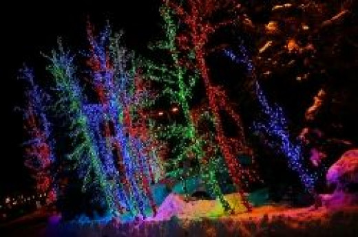 Holiday of Lights Festival in Flagstaff