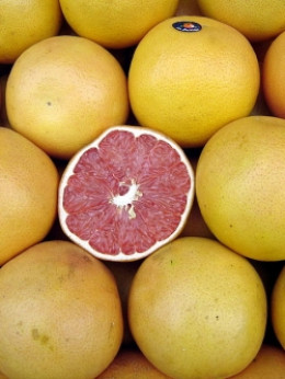 Using grapefruit seed extract to purify water