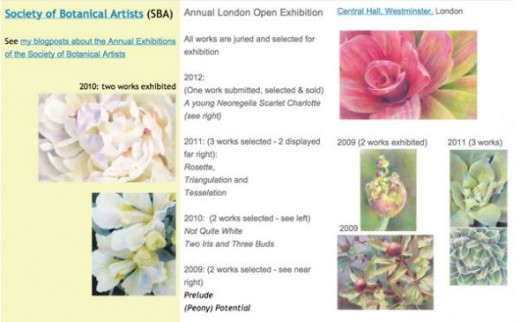 My botanical artwork - selected for four Annual Exhibitions of the Society of Botanical Artists - on the exhibitions page of my portfolio website