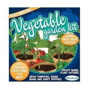 Kid's Vegetable Growing Kit