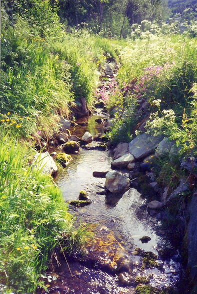 A peaceful creek in Stranda, Norway