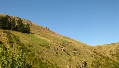 Hillside Along Rapaki Track