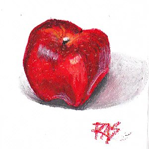 Red Delicious Apple in oil pastels by Robert A. Sloan