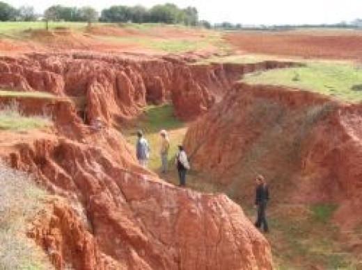 Poor Land Management