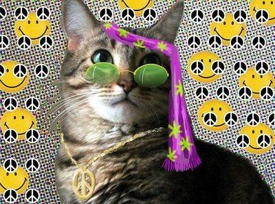 Peace Out to my Catnip Dealer Man