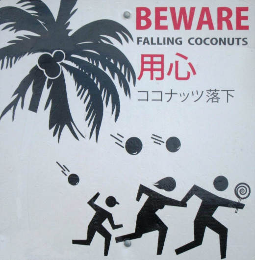 This Hawaiian street sign illustrates coconuts and coconut oil are very much a part of the Pacific life and diet.