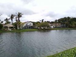 Paddleboat Heaven