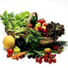 The Fruit And Vegetable Juice Extractor The Friend You