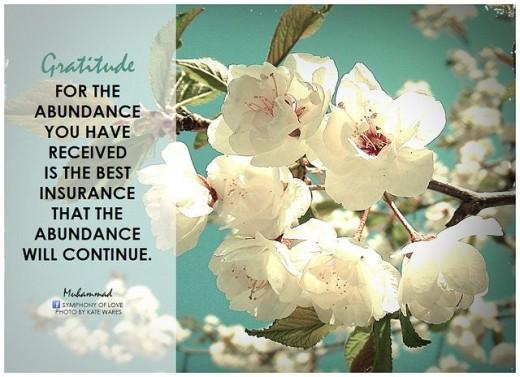 Gratitude - Abundance - Blessings