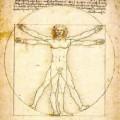 Leonardo da Vinci drawings - The Vitruvian Man