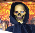 Halloween Skull Masks