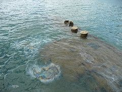 Oil Seeping from the USS Arizona