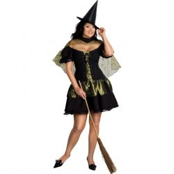 Sexy Wicked Witch Plus Costume