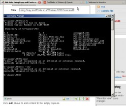 Using Copy and Paste on a Windows DOS Command Line Prompt