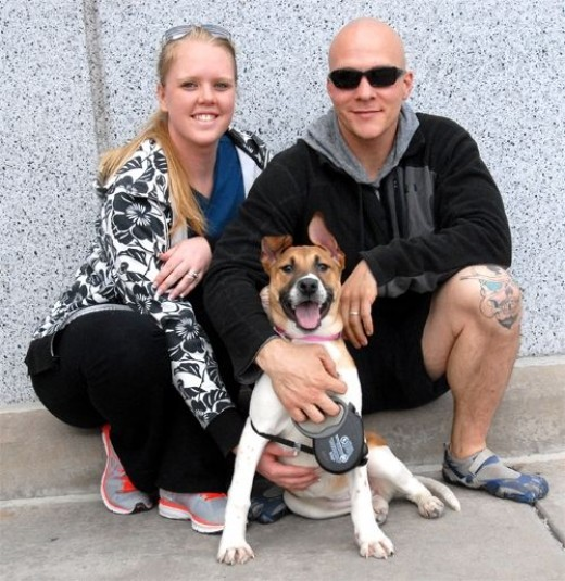 Our sweet girl Fergie (now Molly) found her family. Thank you Jessica and Kyle!