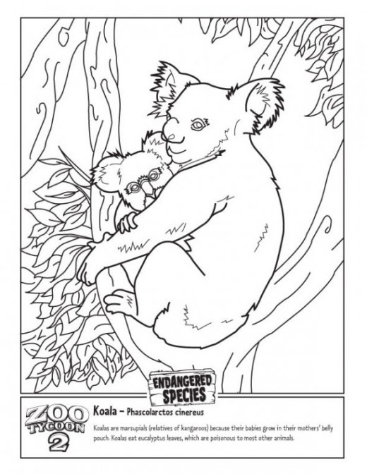 Zoo Tycoon Coloring Pages