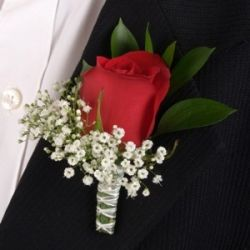 A Red Rose for Him