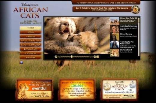 African Cats Movie Cheetah Kittens Pictures
