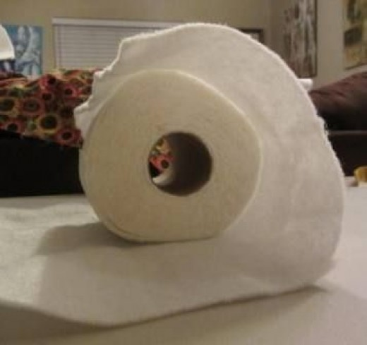 Wrapping the Toilet Paper in Batting