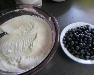 Pudding Mix and Blueberries