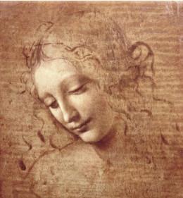 leonardo da vinci - female head - la - scapigliata -1508