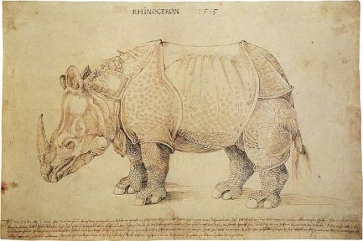 Albrecht Durer Rhinoceros woodcut, 1515