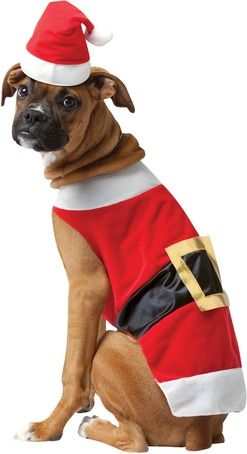 Santa Dawg Halloween Costume for Large Dogs