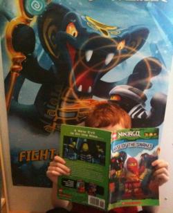Ninjago Snakes Poster